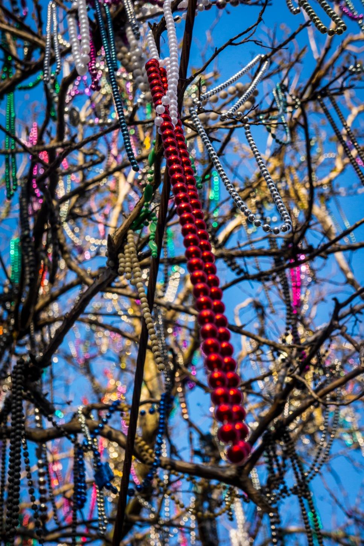 Beads on Trees-1