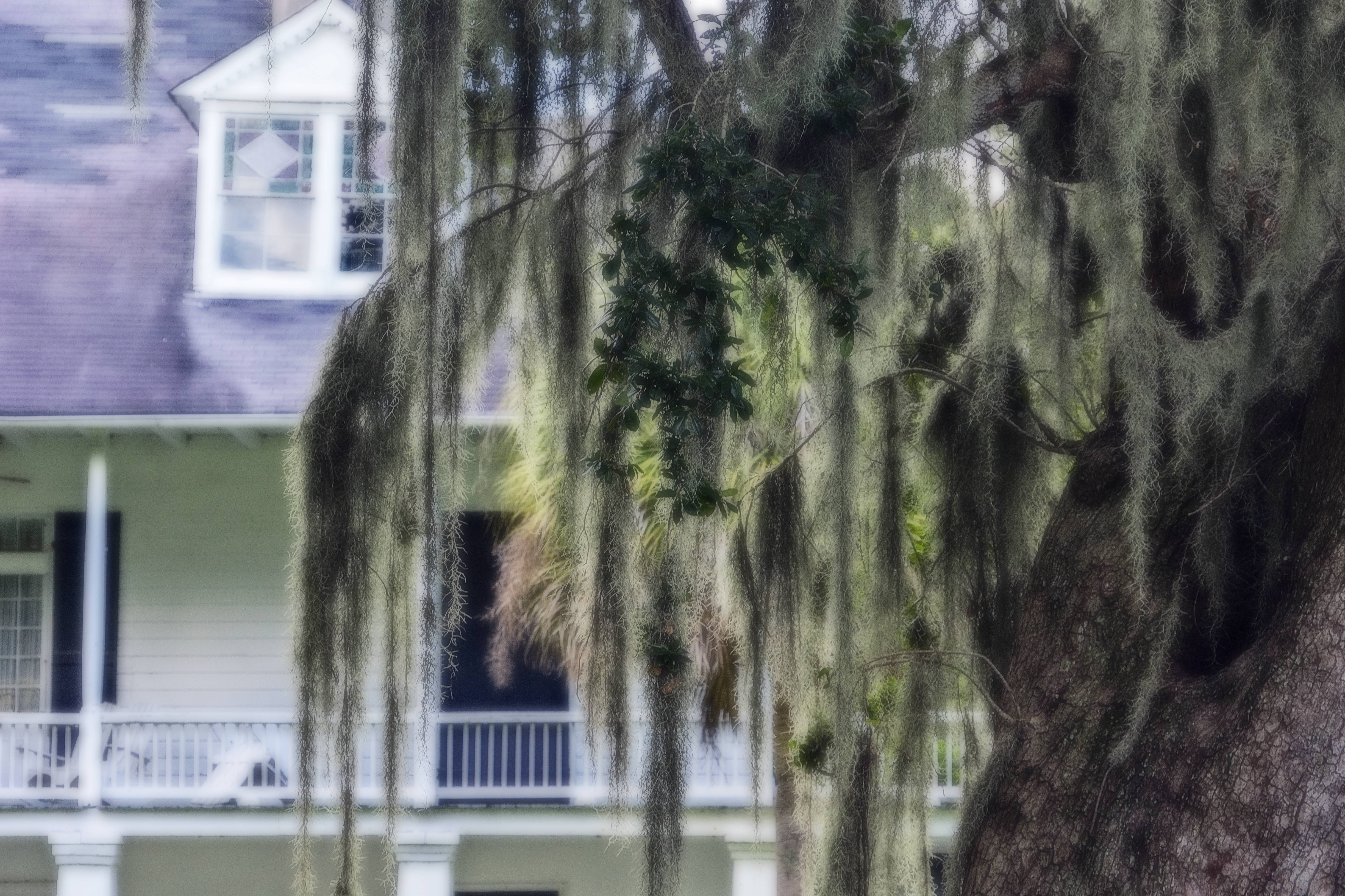 This was out goal. The Kenilworth Plantation House.
