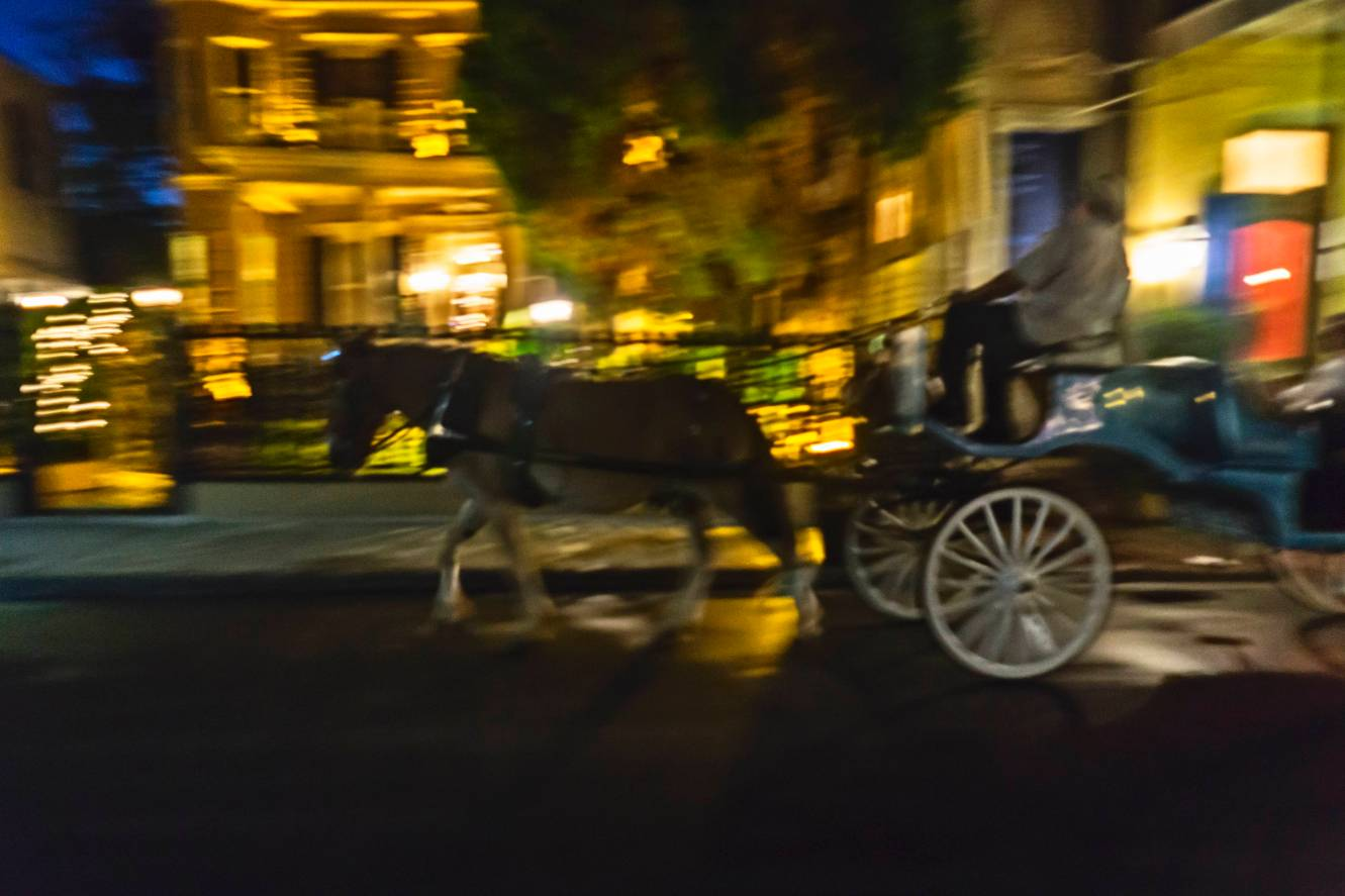 Mule drawn carriage rolls by on Royal Street.