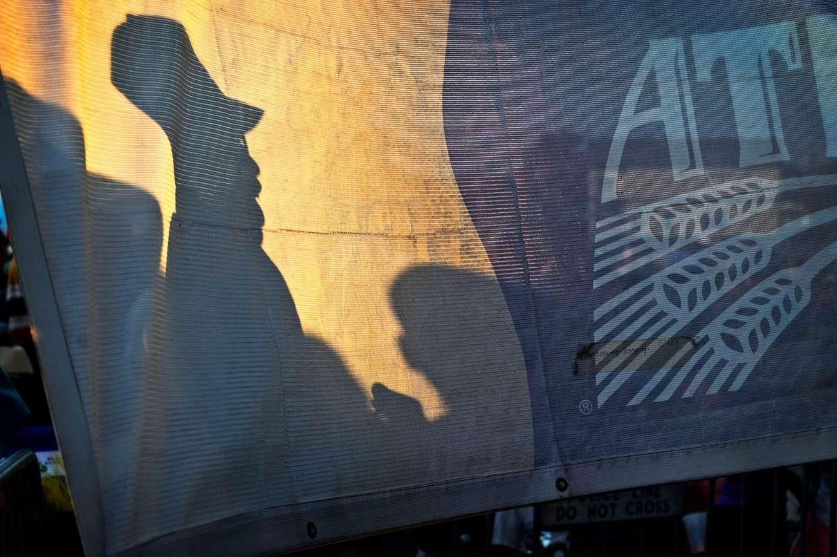 Shadows at Bayou Boogaloo.