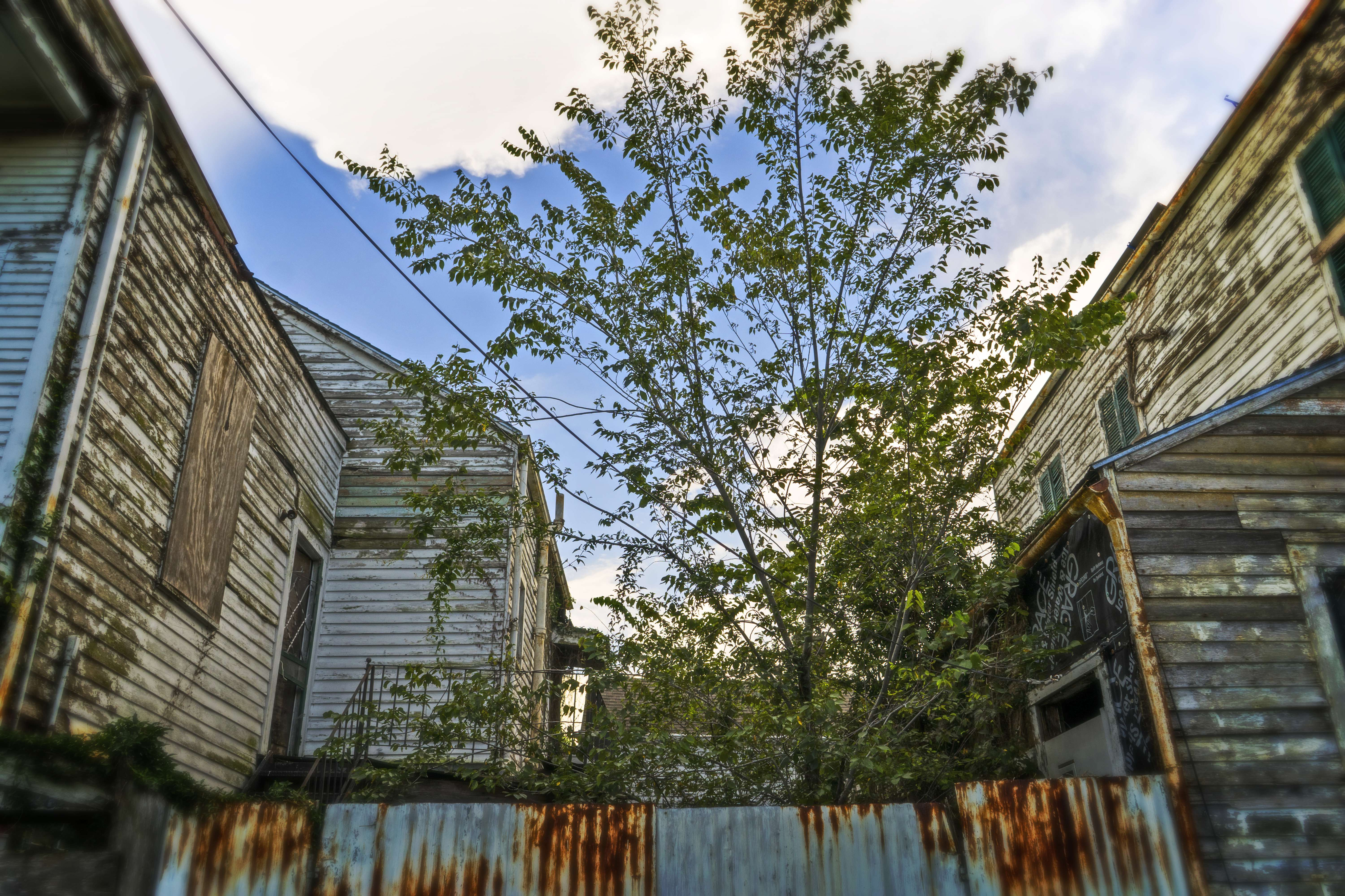 There is still a lot to be torn down or repaired all over the city. This happens to be in the 7th ward.