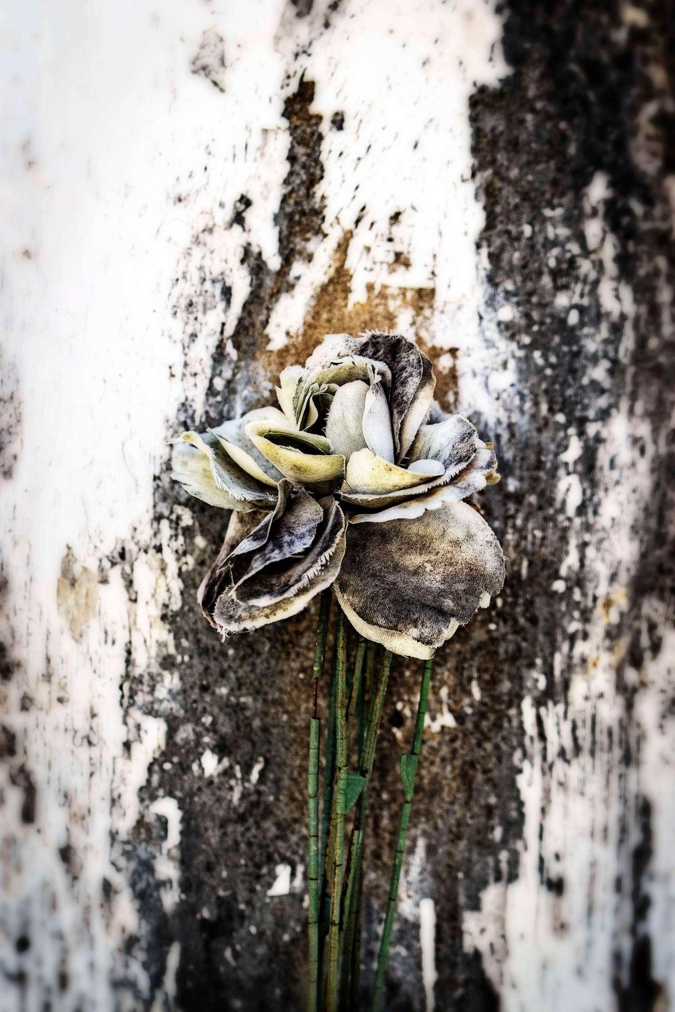 Worn flowers.