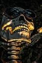 Celebrity Skull.