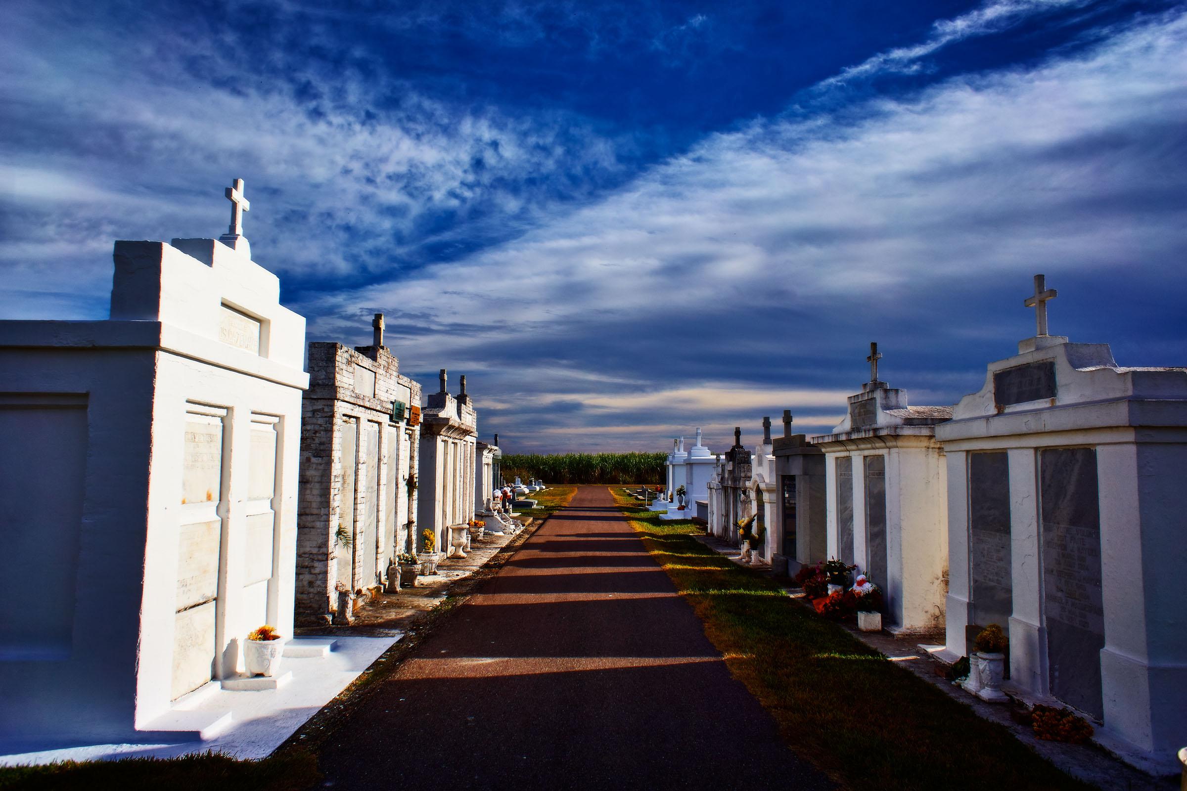Sugar cane fields surround the cemetery.
