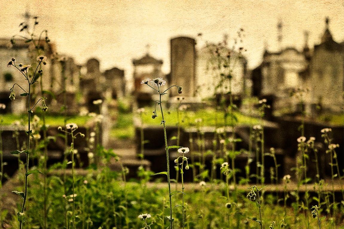 Lafayette Cemetery No. 2.