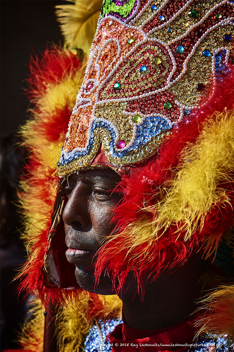 Mardi Gras Indian Portrait