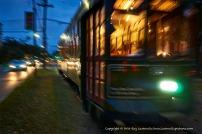 Streetcars on St. Charles Avenue.