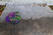 A pile of beads left in the Quarter.