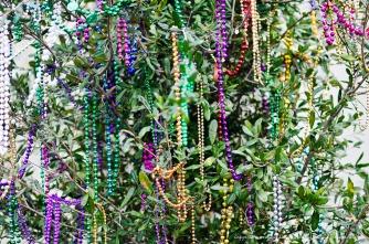 A bead bush.