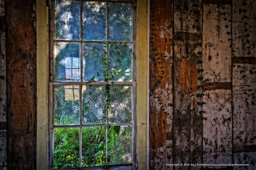 Magical window.