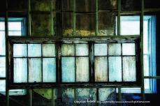 Windows and windows and windows.