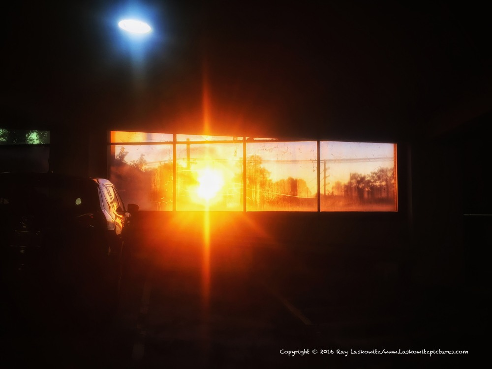 Waiting at sunset.
